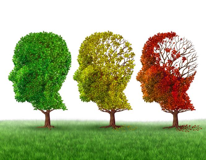 Les troubles cognitifs sont une des conséquences de la schizophrénie